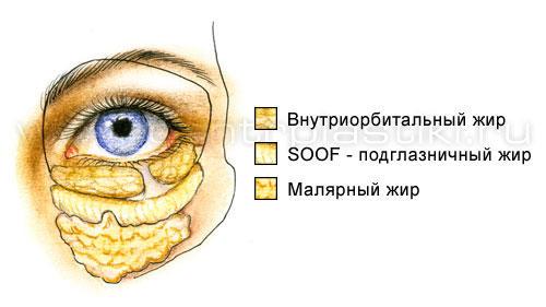Silmade rasva kaotuse all