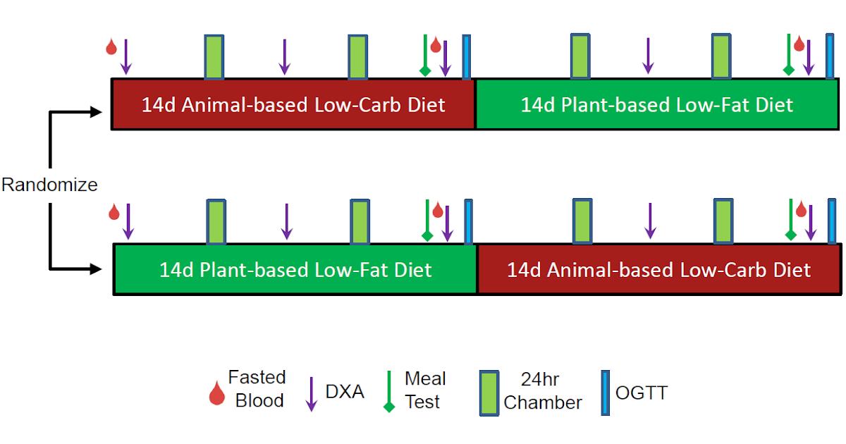 Koik looduslikud rasvapoleti Kaalulangus ja tervislikud rasvad
