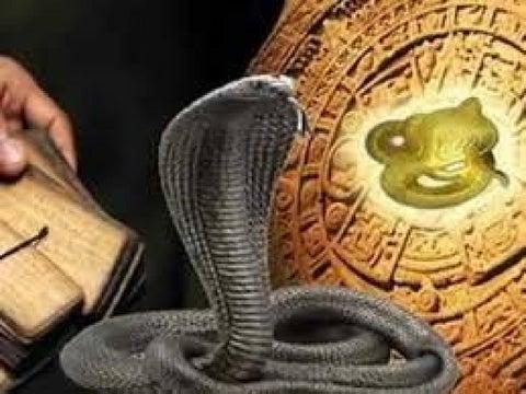 Snake kaalulangus Kuidas eemaldada rasva tagakulg