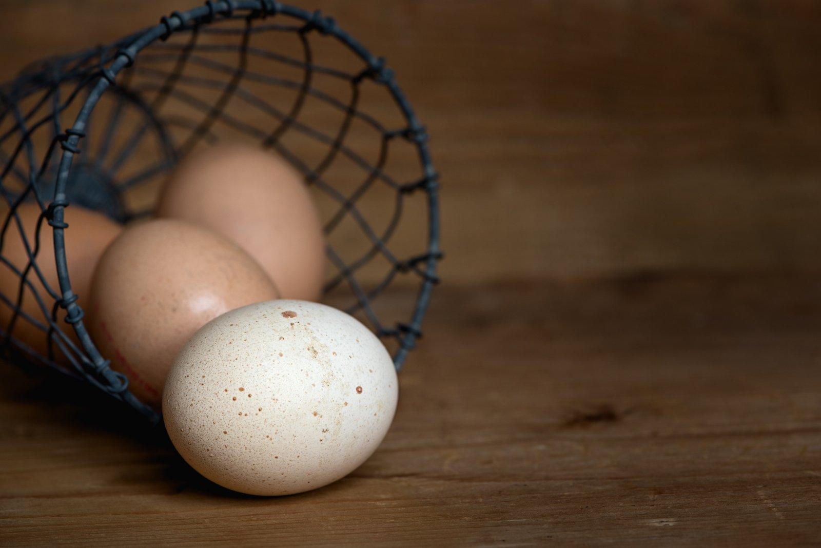 Kas munade soomine poleb rasva Kaalulangus Retreat Alberta