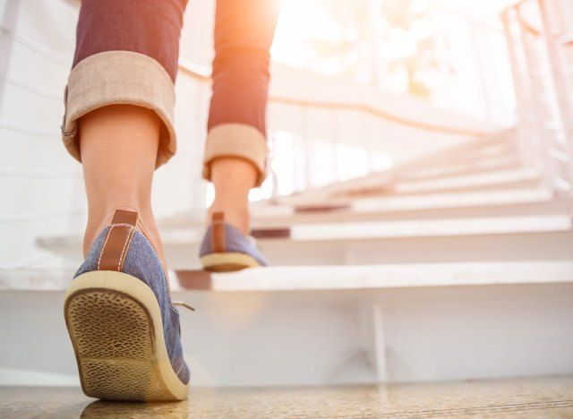 Walking trepid poletada rasva