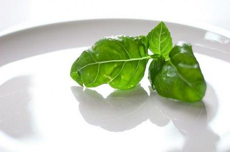 toidud, mis kiirendavad teie metabolismi ja poletavad rasva