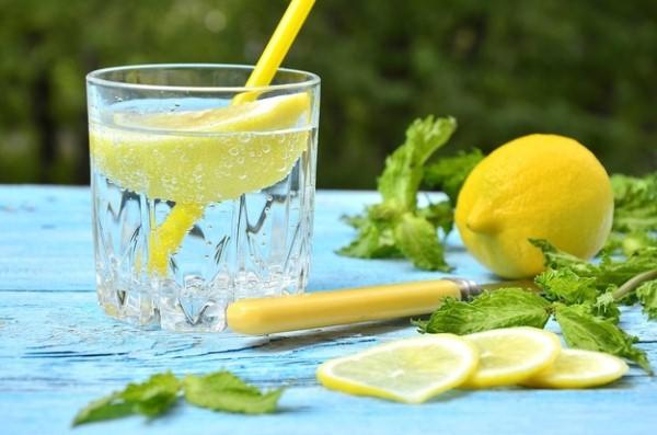 Kuidas kahjustada kaalusid mee ja sidruniga Slimming soob suvila pirukas