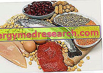 Kaalulangus maitsetaimedega