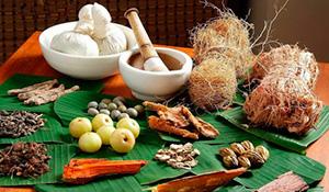 Rasva poletavad maiustused Fat Burn Tips marathi