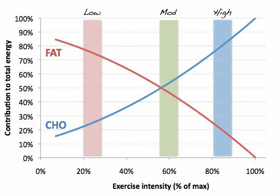 Fat Burning Zone Pantip